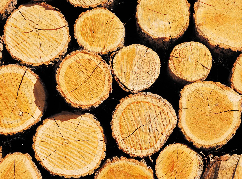 ОБЯВА: Дърва за огрев – нарязани и нацепени