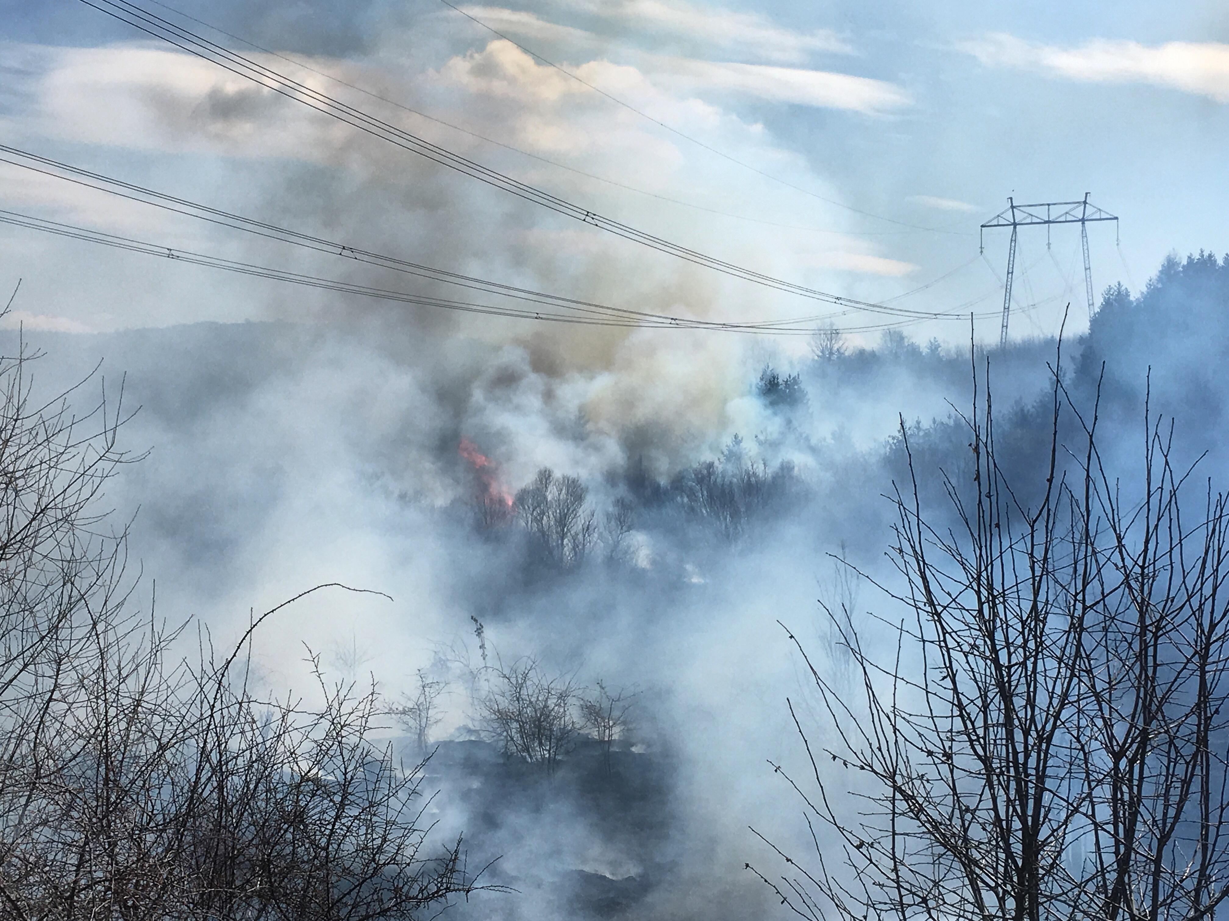 ИЗВЪНРЕДНО: Огромен пожар край Шума, огънят облизва близката гора (ЕКСКЛУЗИВНИ СНИМКИ)